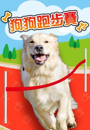 狗狗跑步賽
