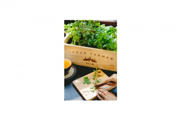 城市小農栽培組-香草花園