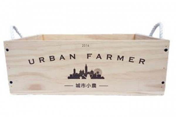 城市小農栽培箱