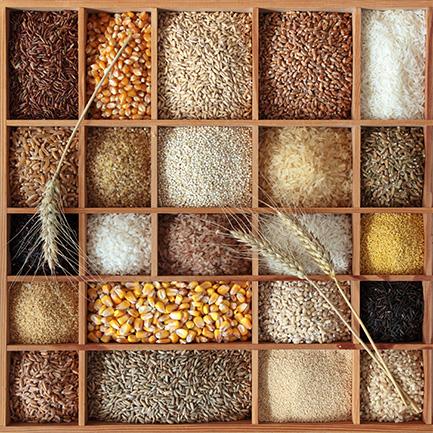 天然穀粉區
