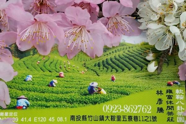 杉林溪 八卦茶園-雍富成記