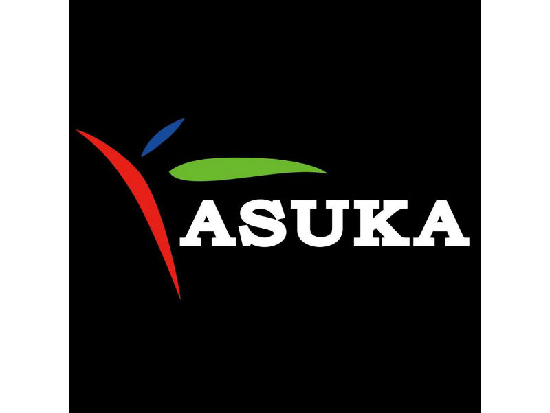 ASUKA飛鳥車用電子