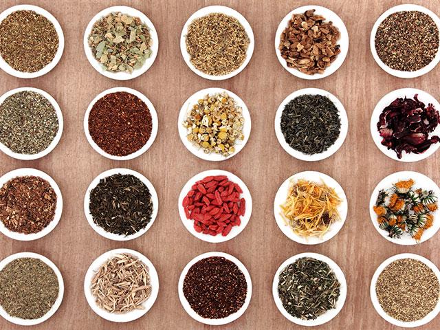 國際名茶區